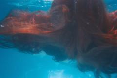 descartvel gua (cristianateixeirafernandes) Tags: gua piscina