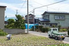 L1003209 (PH-Ryo) Tags: inakadate