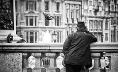 wish I could fly (White_V) Tags: street city people man london fountain monochrome hat canon flying pigeon streetphotography trafalgarsquare wb dreaming 2014 whiteandblack bildings