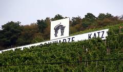 Zell, Weinberg Zeller schwarze Katz (HEN-Magonza) Tags: zell mosel moselle rheinlandpfalz rhinelandpalatinate deutschland germany