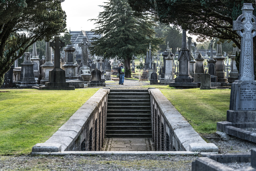 A QUICK VISIT TO GLASNEVIN CEMETERY[SONY F2.8 70-200 GM LENS]-122105
