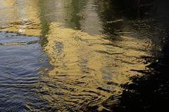 motala strm II (gunnar.berenmark) Tags: norrkping sweden sverige water surface mirror spegling vatten yta motalastrm