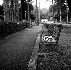 Park Bench (mteckes) Tags: hasselblad 500c bw kodak kodaktrix trix ziessplanar80mm28 zeiss saigon hochiminhcity vietnam film blackandwhite monochrome