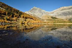 Derborence (Cédric Péclard) Tags: automne lac derborence