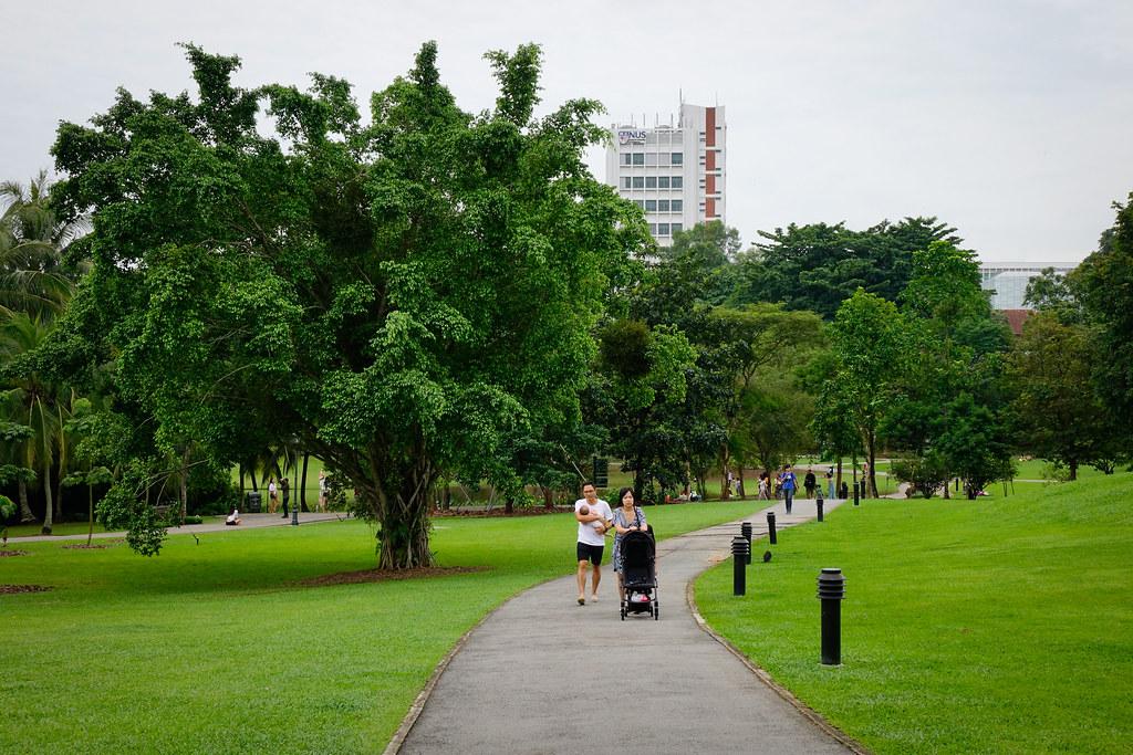parkland pathway essay