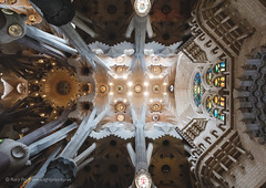 Sagrada Família II (Rory Prior) Tags: sagradafamília gaudí ceiling cathedral spain barcelona