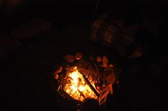 DSC_0363 (David.Sankey) Tags: catskills newyork newyorkstate autumn fall woods forest ny tipi teepee tent camping fire night