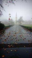 Foggy Path (Andy Tee) Tags: fog foggy weather bleak grey hamilton square birkenhead path leaves autumn autumnal winter wet portrait