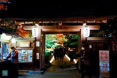 Tohoku 2016 - 519 (西文 Simon) Tags: 日本東北 miyagigun miyagiken 日本