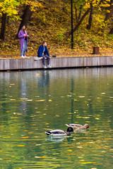 DSC_6486 (sergeysemendyaev) Tags: moscow 2016 russia   fall autumn goldenautumn    pond water couple ducks
