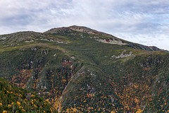 Mount Jefferson (Bob90901) Tags: mountjefferson newhampshire presidentialrange whitemountainnationalforest mountain sky clouds landscape mountainside autumn 2016 october 1209 afternoon rpg90901 canon 6d canonef70200mmf28lisiiusm canon70200f28lll mountainpeak