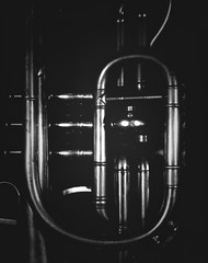 Cornet (Nicolas) Tags: buschpressant viewcamera ilford multigrade negativepaper lc29 tubes light shadow lumire ombre dark noir curves courbes nicolasthomas detail music instrument musique