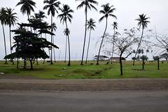 2016-09-22-3132 (tonykliemann) Tags: papua new guinea alotau
