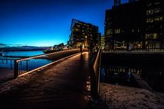 Bridge, Oslo, Norway (Davide Tarozzi) Tags: bridge oslo norway pontenorvegia kongeriketnoreg kongeriketnorge night nightshots notturna