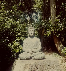 (PhotosWithLouis) Tags: buddah chill chilling woods peace walk found photography