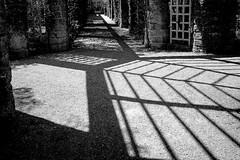Web (KPictures Fotografie) Tags: mnchen munich germany deutsch fujixe2 fujinon1855 architecture architektur landscape blackwhite lines travel city europe botanischergarten