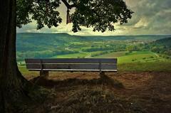 Germany, Landschaft rund um Leonberg, Ausblick, 75255/7567 (roba66) Tags: bench bank roba66 landschaft landscape paisaje nature natur naturalezza leonberg germany