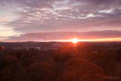 Mt. Auburn Sunset (catherinehodges) Tags: suburbs boston massachusetts fall autumn november sunset watertown mtauburncemetery