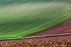 Colline del Monferrato (beppeverge) Tags: beppeverge colline countryside italy landscape monferrato paesaggioitaliano