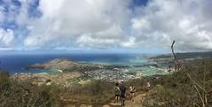view on the other side (peakintheclouds) Tags: hike trail waikiki honolulu oahu hawaii kokohead kokoheadcrater outside workout freshair cardio