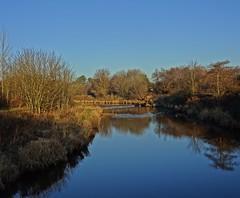 Delicious December (Bricheno) Tags: bricheno ayrshire scotland escocia reflections schottland écosse scozia escòcia szkocja scoția 蘇格蘭 स्कॉटलैंड σκωτία kilwinning river garnock rivergarnock rnbgarnock
