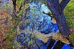 Big Springs Creek (Pugsley 66) Tags: creek water flowing abc nikond7000 adobe arizona hiking trails