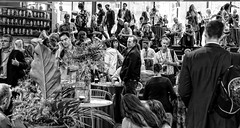 63+102: Wired for Wonder 2016, Sydney - The Wonderers (25) (geemuses) Tags: wiredforwonder2016 sydney commbank commonwealthbank cba banks banking speakers thinkers philosophers wonderers attendees corporatephotography business nidaevents