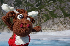 DSC01619 (The Crochet Crowd) Tags: crochetmoose amigurumi moose crochet doll alaska britishcolumbia thecrochetcrowd michaelsellick jeannesteinhilber danielzondervan crochetcruise mooseontheloose