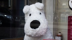 a window of Herge delights 03 (byronv2) Tags: dog window shop comics edinburgh snowy books plush tintin shopwindow newtown livre westend graphicnovels cuddlytoy herge bandedessinee edimbourg