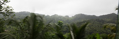 IMG_1948 (jaglazier) Tags: trees mountains clouds rural palms islands landscapes january palmtrees fields farms forests stlucia streetscapes orchards 11214 deciduoustrees 2014 castries saintlucia dennery copyright2014jamesaglazier growves