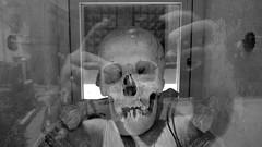 Pizzo, Calabria 2014 (Paul de Gregorio) Tags: skull calabria pizzo purgatory wurz