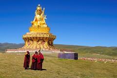 Three young nuns in front of the big statue of Padmasambhava, Tibet 2013 (reurinkjan) Tags: dzogchen 2013 yachengar padmasambhavastatue བོད་ལྗོངས། ©janreurink tibetanplateauབོད་མཐོ་སྒང་bötogang tibetབོད buddhistསངས་རྒྱས་ཆོས་ལུགས་པ nunneryཨ་ནི་དགོན་པ་anidgonpa monkགྲྭ་བ།grwaba buddhismསངས་རྒྱས་ཆོས་ལུགས།sangsrgyaschoslugs yarchengar greatertibetབོད་ཆེན་པོböchenpo tibetannationalitytibetansབོད་རིགས།bodrigs tibetannationtibetanpeopleབོད་ཀྱི་མི་བརྒྱུདbökyimigyü nunཇོ་མོ།ani sisterhoodཨ་ནིའི་ཚོགས་པanitsokpa khamཁམས།easterntibet nyingmaredhatsectརྙིང་མrnyingma ༢༠༡༣ khamཁམས་བོད khamsbodkhamwö pelyülདཔལ་ཡུལ།county nyingmapahermitage yarchengonpaཡར་ཆེན་དགོན་པ་ yarchengarཡར་ཆེན་སྒར་ dzinchuཛིན་ཆུ་ lamaachukrinpoche yellegar rinchenlingpa yachengönཡ་ཆེན་དགོན། yachengarཡ་ཆེན་དཀར་། stupaམཆོད་རྟེན༏mchodrtenchorten yarchengön