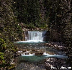 Johnston Canyon Water Falls, Banff National Park, Alberta, Canada (David Maslen) Tags: trees canada nature water creek canon river landscape rockies flow waterfall rocks natural rocky canyon glacier alberta flowing banffnationalpark t3i canadianrockies canont3i
