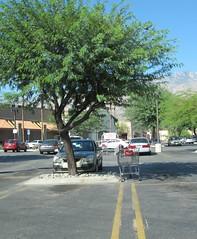 Auguts 8, 2014 (1) (gaymay) Tags: california gay love happy desert palmsprings triad