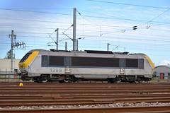 1359 SNCB NMBS Reeks 13 Calais Frethun 19.08.14