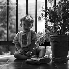 Il Silenzio degli Innocenti - The Silence of the Lambs (.Luigi Mirto/ArchiMlFotoWord) Tags: nikon adobe area ha rom negativo zona bianconero 100asa mirto corel bimbi corelphotopaint pellicola sviluppo 160asa paraluce sovraesposizione postproduzione zonale sistemazonale stativo fx37 granuli silenziodegliinnocenti grigiomedio zonedombra pentaprisma hanseladams scalatonale zonav alogenurodargento hydroquinone agfaagfapanapx100asa archimlfotoword nikoncapturex2 luigimirto corelx6 massimaacutanza fenidone temperaturacromatica hasselbladtuboprolunga8mm adobephotoshopcc effettoschwarzschild filtridicroici svilupponegativo pentaprismaesposimetricohasselbladpme45 hasselblad503cwi agfaduoscant2500pro portascasi filtrouvsky01a cadutaluce hasselbladmagazzino6x6120 massinaacutanza testamanfrottomod141 phocushasselbladv276 manfrott144aprofessional sekonicesposimetrodualspotfl778 carlzeissmacroplanart120mmf140cfi difettoreciprocit