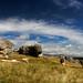 Limestone landscape NZ