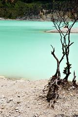 DSC_0141-2 (ajinurvita) Tags: bandung alam danau wisata kawahputih belerang