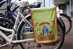 Michel La Guadalupana (FaceMePLS) Tags: bike bicycle nederland thenetherlands streetphotography tas fiets spijkenisse fietstas pannier saddlebag straatfotografie kettingslot damesfiets facemepls nikond300 batavusdiva dpcfietsslot michelvelascoignacio