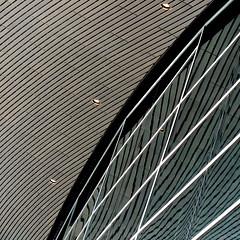 aquatics centre #043 (Harry Halibut) Tags: art public images allrightsreserved londonbuildings londonarchitecture imagesoflondon colourbysoftwarelaziness publicartinlondon 2014andrewpettigrew london1407229743