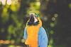 (katmariephoto) Tags: ocean life travel blue color love beach nature yoga hawaii islands rocks waves peace natural pacific maui adventure serenity tropical parrots infinite sights roadtohana