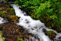 Below Wahkeena Falls_16 (martinjones1946) Tags: oregon creek river waterfall al stream falls cascade columbiarivergorge waterscape wahkeena martinjones platinumheartaward nikond5000