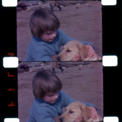 Boy and the dog (theirhistory) Tags: boy dog colour film beach seaside sand child jumper 16mm