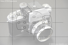 Nikon D750 - Autofocusing, 11 Points (dojoklo) Tags: grid book nikon focus dummies tricks master howto tips use d750 setup 51 guide manual af learn tutorial viewfinder autofocus quickstart fieldguide afpoint recomment nikond750