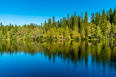 Clear sky (notforsnowboard) Tags: blue autumn trees reflection green fall nature water oslo norway forest landscape fuji maria clearsky indiansummer nordmarka 2014 xe1 ullevålsæter fujifilmxe1