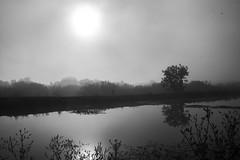 """Туманное кировское утро • <a style=""""font-size:0.8em;"""" href=""""http://www.flickr.com/photos/107434268@N03/15067638921/"""" target=""""_blank"""">View on Flickr</a>"""