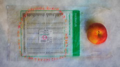"""Bag for the new Project: """"an apple a day keeps the doctor away - An ENSO (Japanese: circle, Kreis) a Day ... """" - Start of the Project: 1. September 2014"""