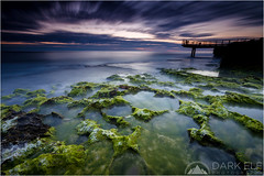 as Winter fades away (Maciek Gornisiewicz) Tags: longexposure sunset seascape beach clouds canon photography evening coast moss rocks dusk tripod north australia lookout filter shore perth western maciek 2014 landsdcape 1635mm darkelf 5dii gornisiewicz littlestopper aswinterfadesaway