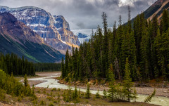 Walking on a Dream (djryan78) Tags: landscape sigma rockymountains rocky mountains outdoor canon rockies 6d jasper river forest alberta afternoon sigma24105 mountain canadianrockies nationalpark jaspernationalpark canon6d 24105 snow trees summer tree travel canada stream dslr water valley sunwapta sunwaptariver mountainside hill colombiaicefields