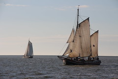 Klipperrace 2016 (Jensje) Tags: netherlands niederlande klipperrace ijsselmeer zeilen klipper segeln wind blue sky water classic